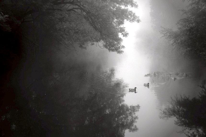 20121011183441_nebelfluss.jpg