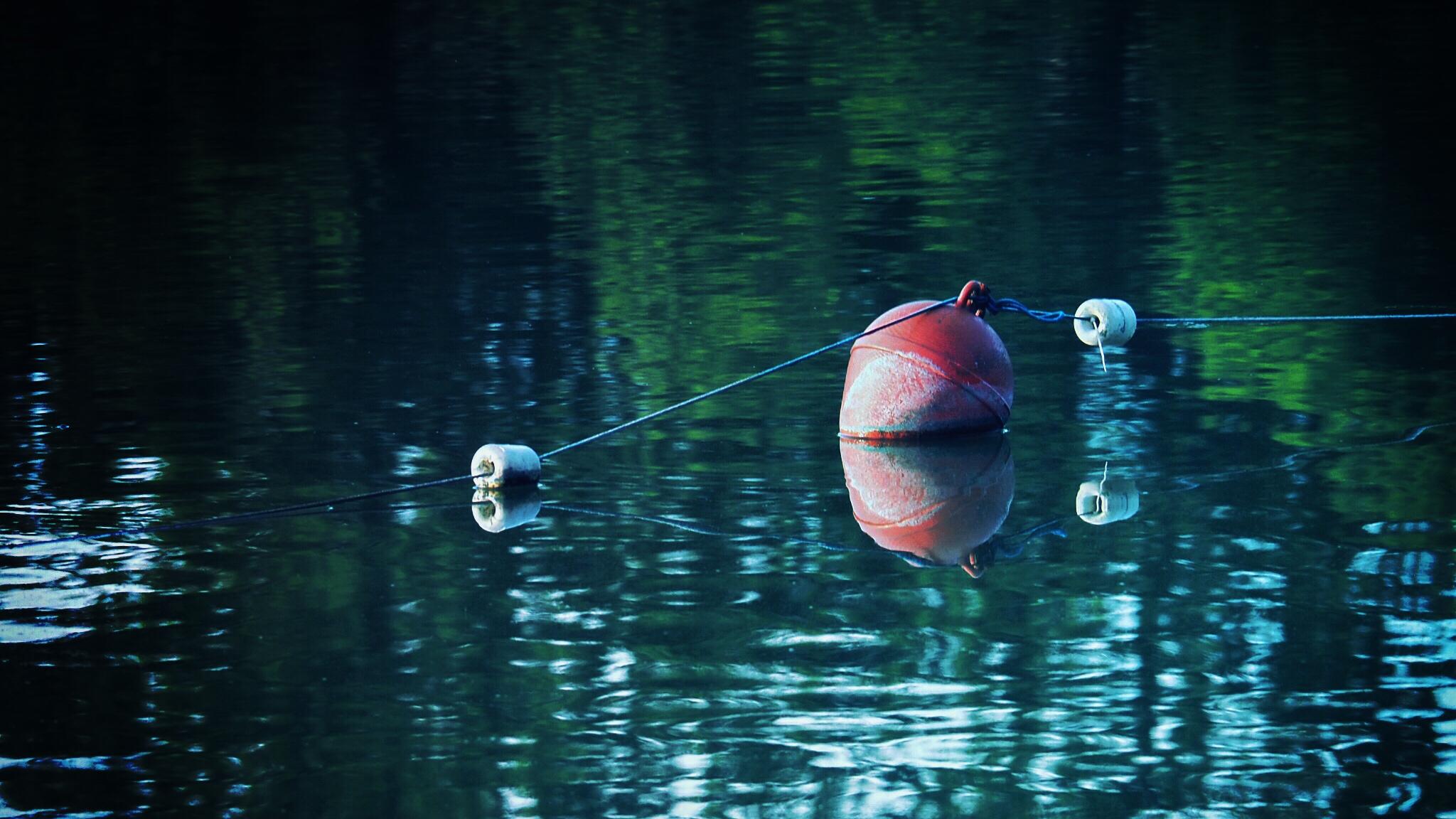 Boje auf dem großen Teich im Kurpark